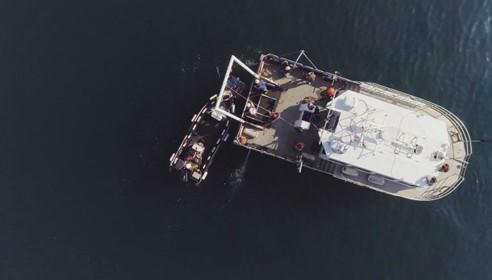 HydroSurv Advacing Coastal Marine Survey